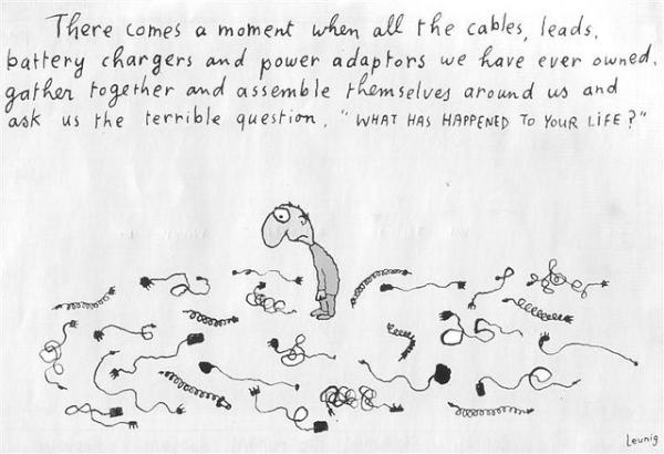 Leunig cable life